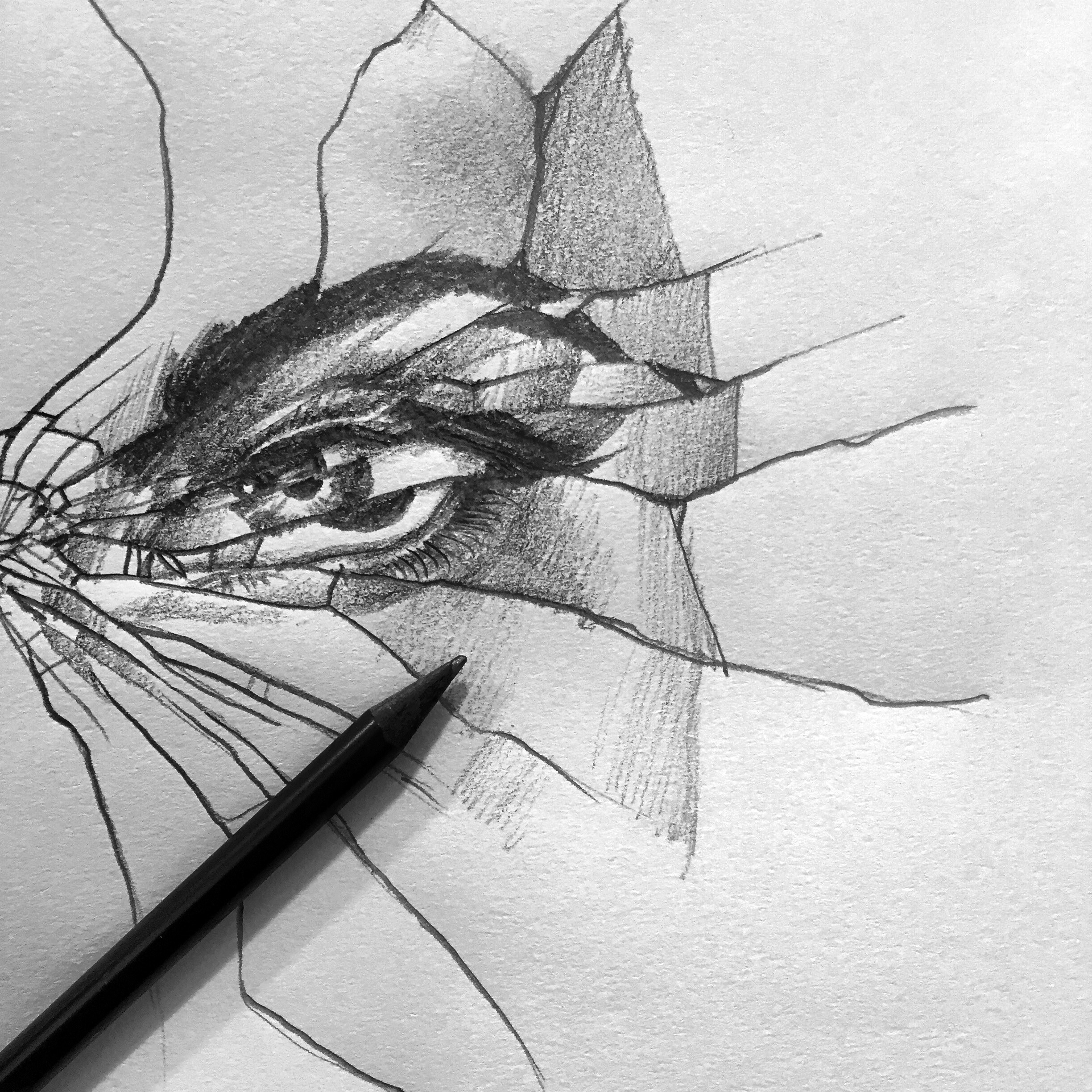 Drawn glass mirrored  #drawing #sketch eye #glass