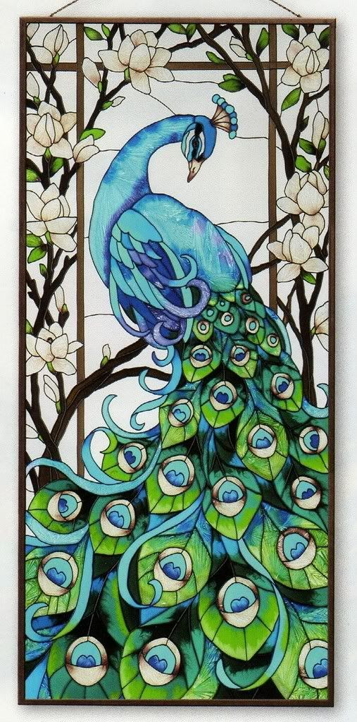 Drawn glasses glass window PEACOCK MAGNIFICENT 17x37 WINDOW ideas