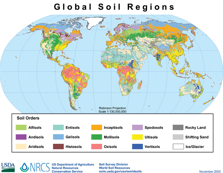 Drawn globe sketched Global Map Global Soils Regions