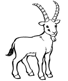 Drawn goat / goat drawings Animals Goat_Line_Art