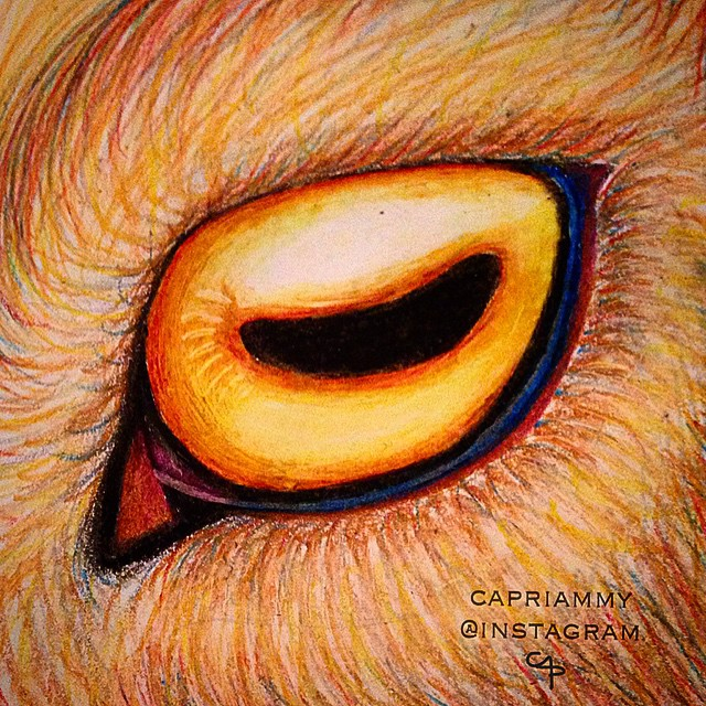 Drawn goat eye Eyeball drawing on (Which up