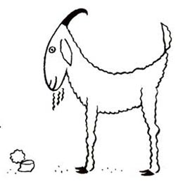 Drawn goat for kid step by step animal Goat Step How Draw How