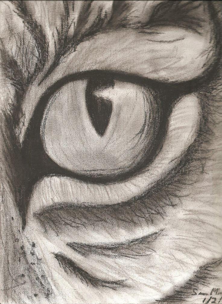 Drawn pencil drawing Pencil ideas easy animals 25+