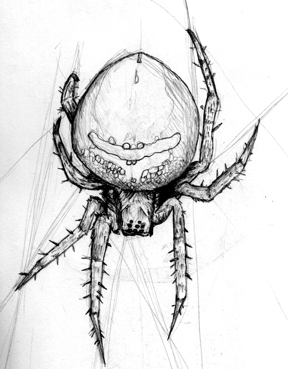 Drawn pencil funny On by sketch Spider GogglesOfEscape