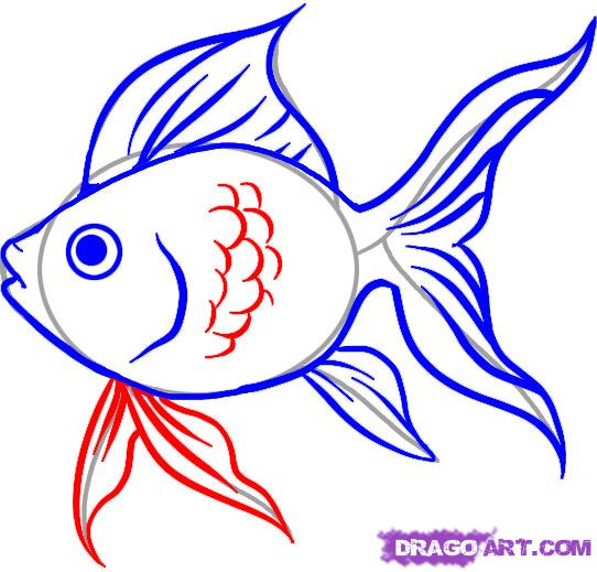 Drawn gold fish Search drawing drawing  Ref