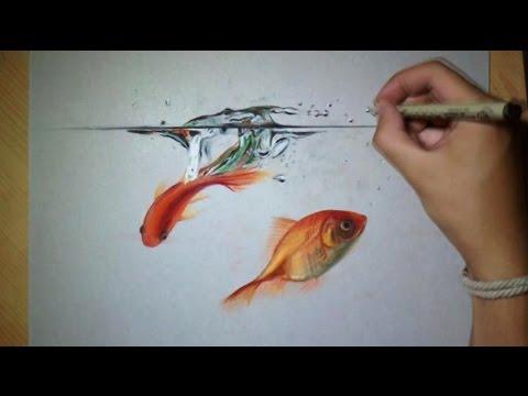 Drawn gold fish Goldfish Water Fun !