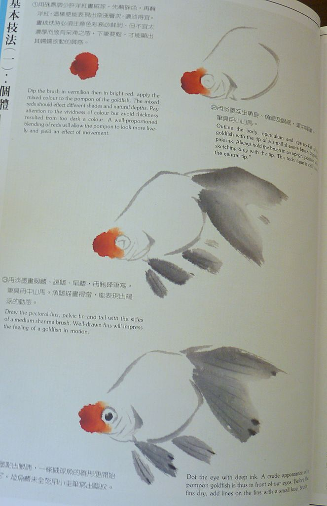 Drawn gold fish chinese Goldfish Roll Drawing click image