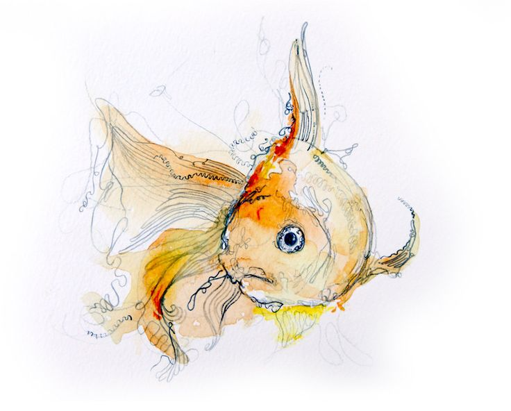 Drawn gold fish chinese Images Watercolor art Watercolor 28
