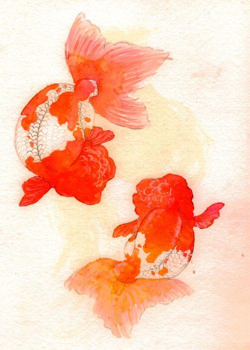 Drawn gold fish chinese On Chinese images Phenylketonurics best
