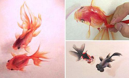 Drawn gold fish chinese Http:// Vivid media become on