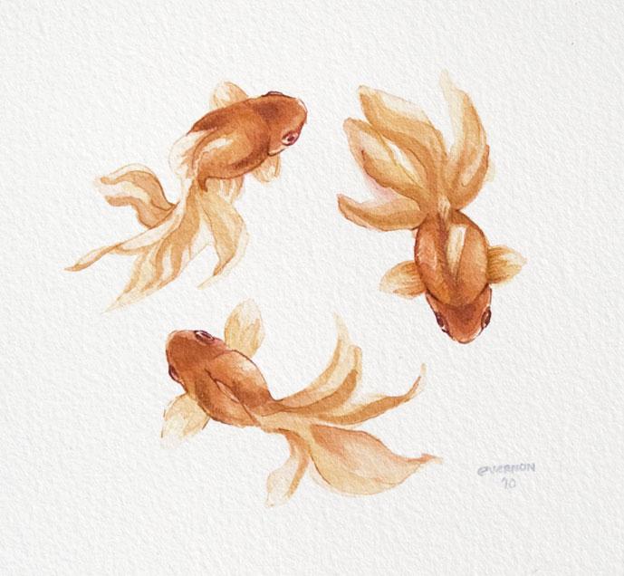 Drawn goldfish fish swimming Tattoo Fish circle Inspiration circle