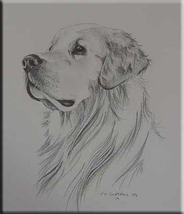 Drawn pug simple realism 25+ Pinterest drawings In Simple