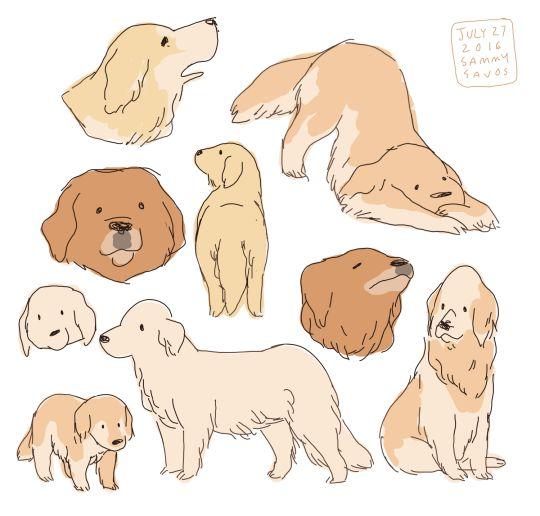 Drawn golden retriever chibi Tumblr Drawings by hamotzi
