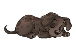 Drawn golden retriever chibi A Puppy Puppy Step to