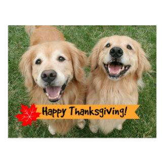 Drawn golden retriever happy thanksgiving Smiling Golden Retriever Wishes Golden