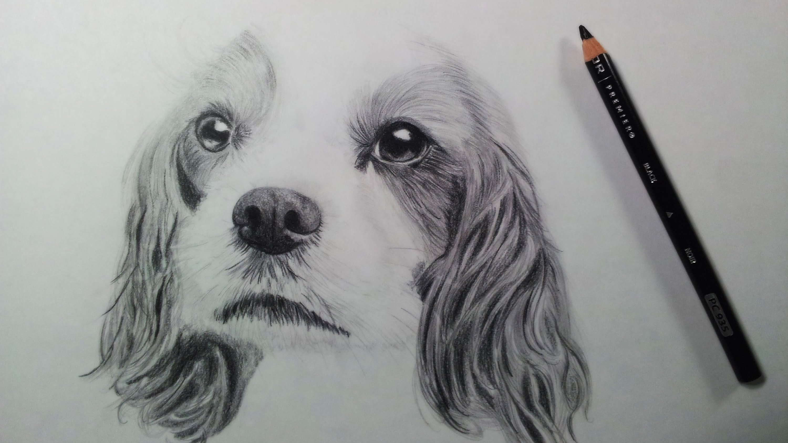 Drawn puppy realistic A YouTube Lapse Time (Puppy)
