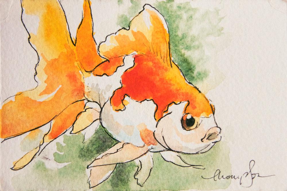 Drawn goldfish Item? Fat original this tiny