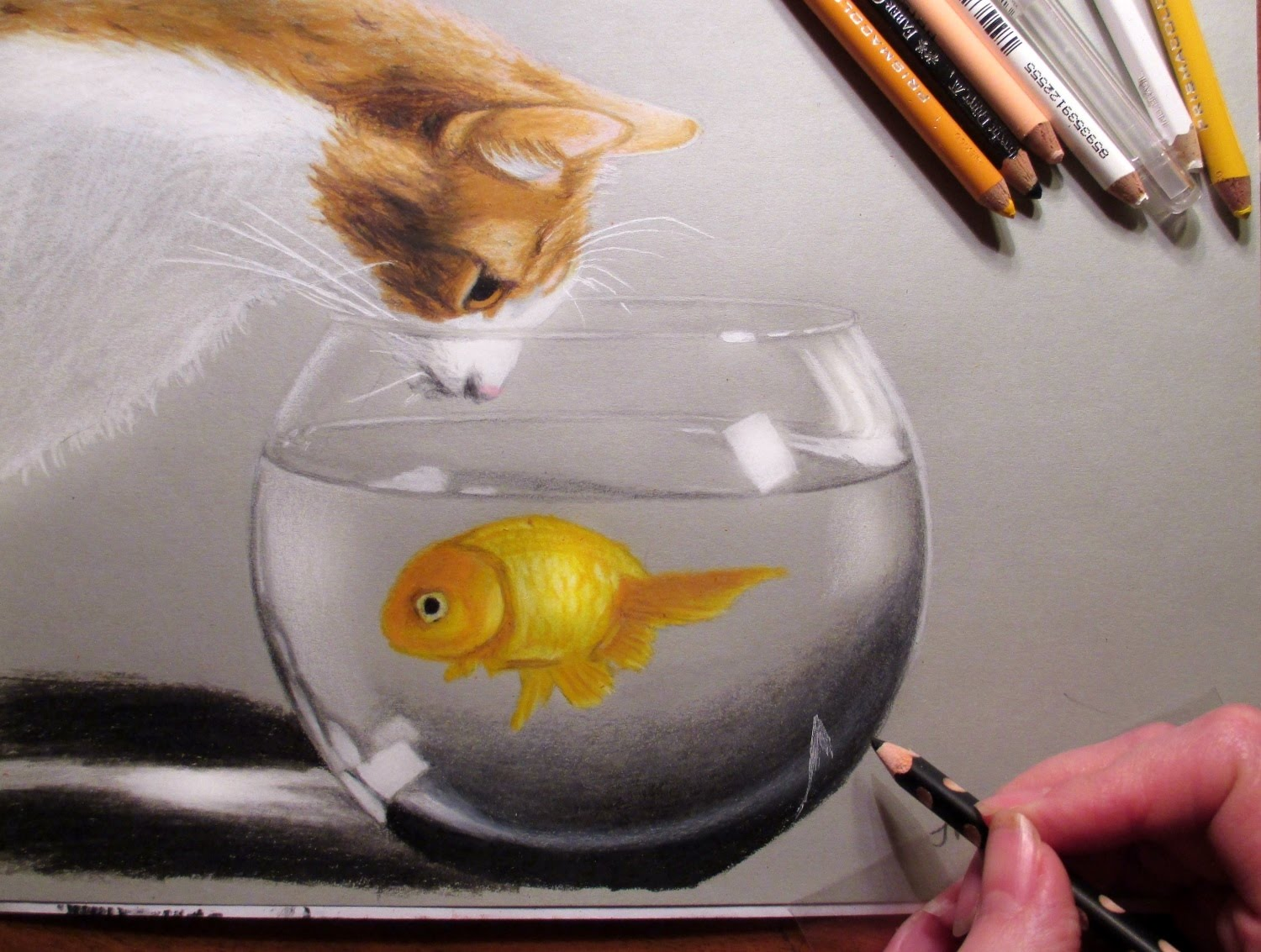 Drawn goldfish coloured fish Drawing Fish and Susak Drawing