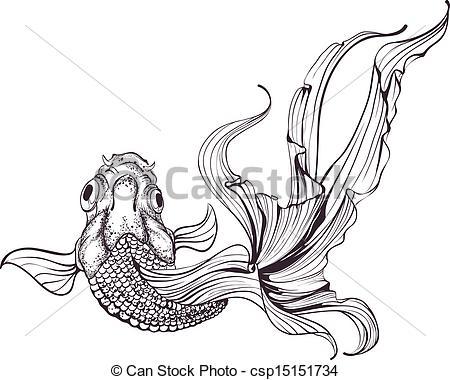 Drawn goldfish fancy goldfish Blanc Drawing Vecteur Gallery croquis