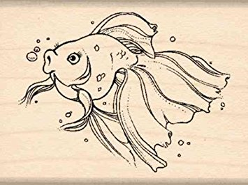 Drawn goldfish rubber  Rubber inches 1 x