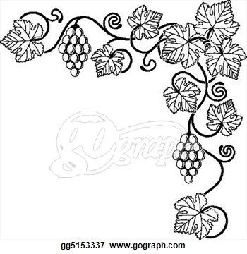 Drawn grape animated Art vine images on Vine