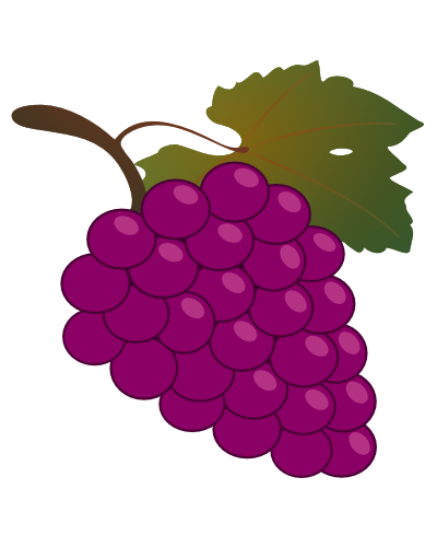 Drawn grape animated Con animated Google FRUITS VEGETABLES