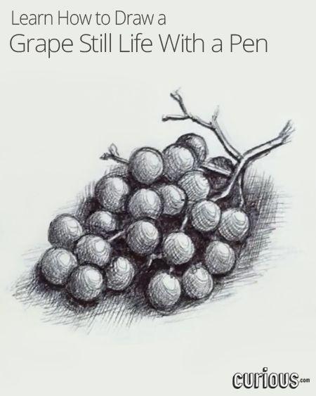 Drawn grape easy Best Pinterest Life ideas on