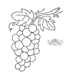 Drawn grape easy Embroidery in More leaf Embroidery