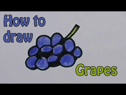 Drawn grape easy Grapes YouTube Fruit Draw for