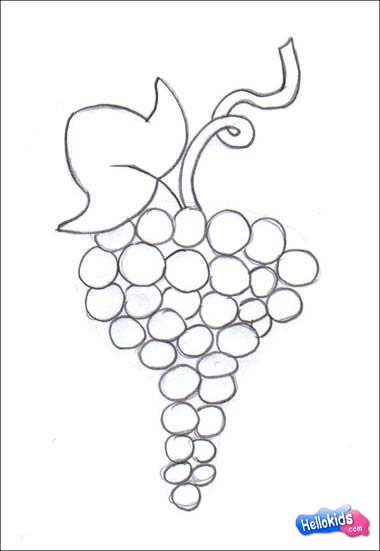Drawn grape easy How draw grape com how