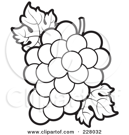 Grape clipart drawn Outlines Grapes A for Page