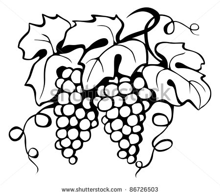 Drawn leaves vine leaf Display_pic_with_logo arms on drawing of