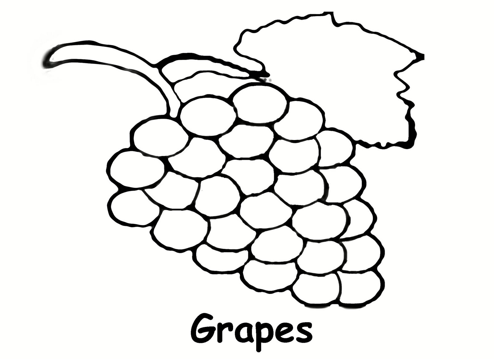 Grape clipart drawn Outline Clip Drawing Art on