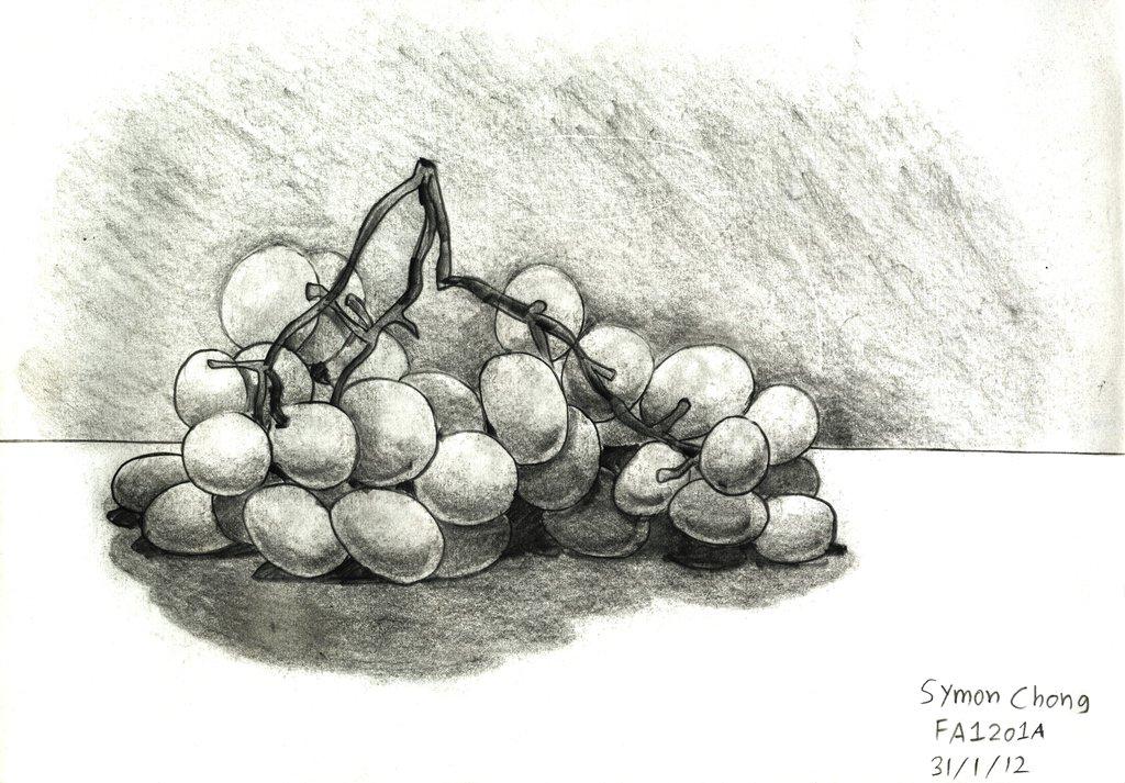 Drawn grapes pencil sketch Sketch Grapes Grapes DeviantArt on