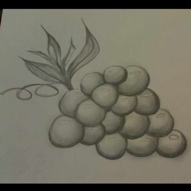 Drawn grapes pencil sketch #stilllife #Grapes #sketch #drawing