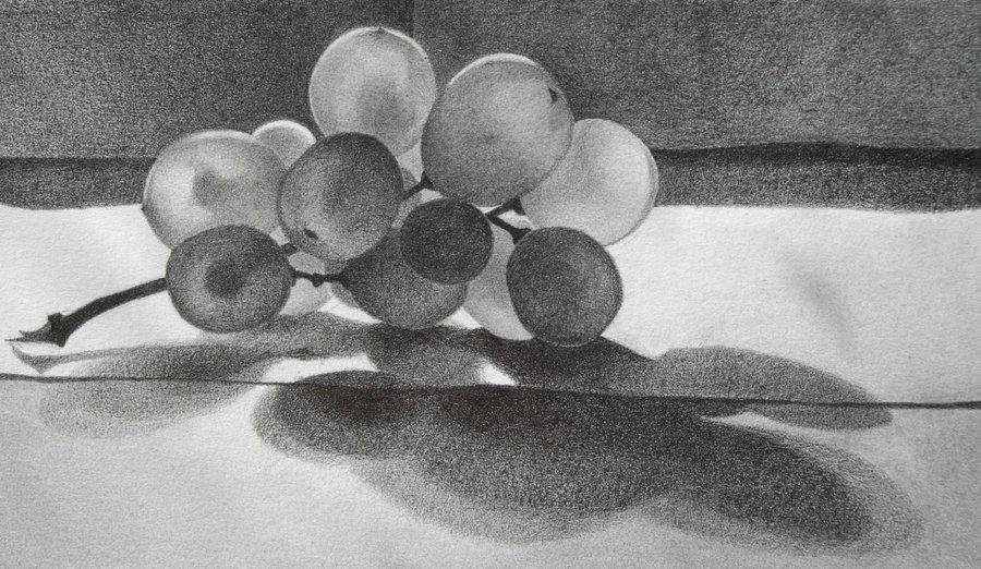 Drawn grapes pencil sketch Grapes DeviantArt GnomesAndCookies Grapes GnomesAndCookies