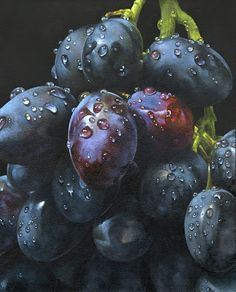 Drawn grapes realistic Für the Pinterest Search grapes