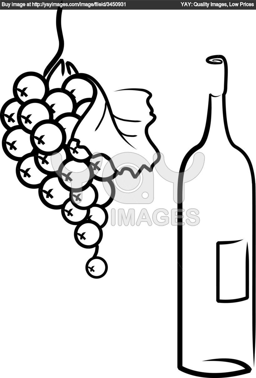 Drawn grape wine grape Grapes Wine Clipart Free grapes%20drawing