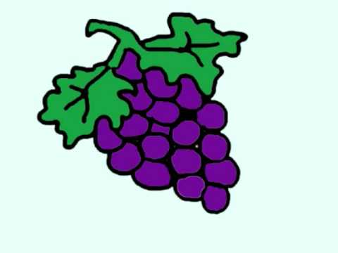 Drawn grape Clipart Drawing Clipart Images Panda