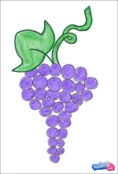 Drawn grape #5
