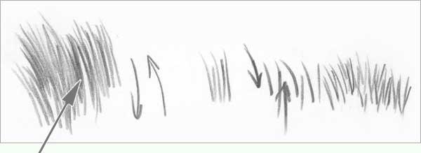 Drawn grass #9