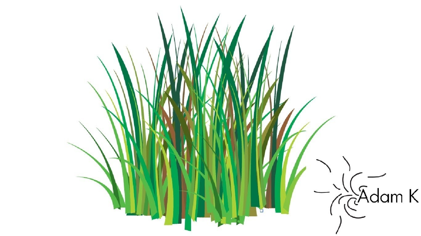 Drawn grass How Vector How Way/ Vector