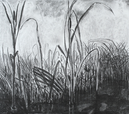 Drawn grass charcoal Drawings of Pool KRISTIN Vernal