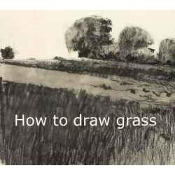 Drawn grass charcoal On guide Drawings grass to