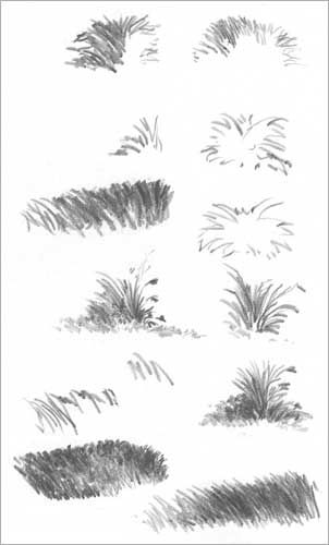 Drawn grass charcoal By Pinterest Drawing WEEDS WEEDS