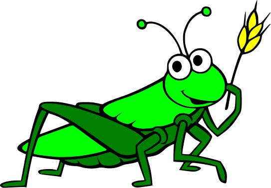 Drawn grasshopper Drawn Google drawn drawn Pinterest