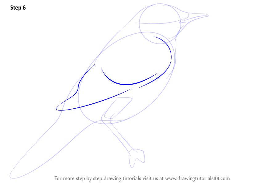 Drawn grasshopper Drawn Bird Warbler by a Weekly Tutorials