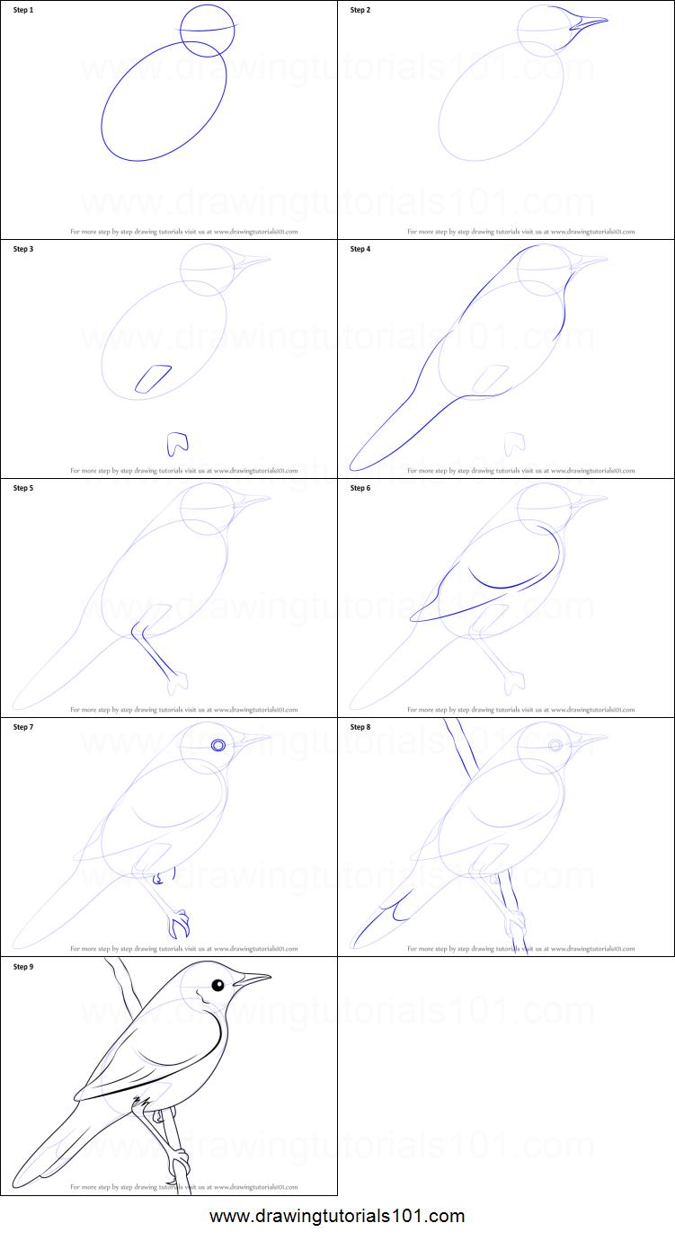 Drawn grasshopper Drawn Bird By to printable a Warbler