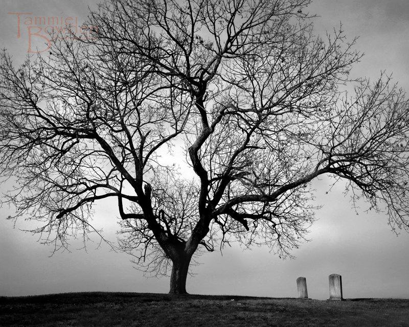 Drawn graveyard black Cemetery Love Love and Silhouette