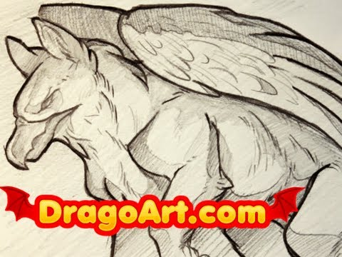 Drawn griffon How Step to a Gryphons